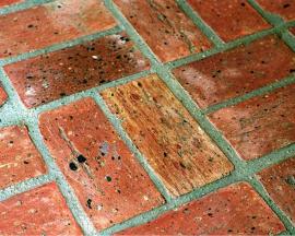 """Chicago Common """"Fossilcut"""" Brick Flooring"""