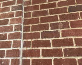 Fossilcut Street Paver Tile
